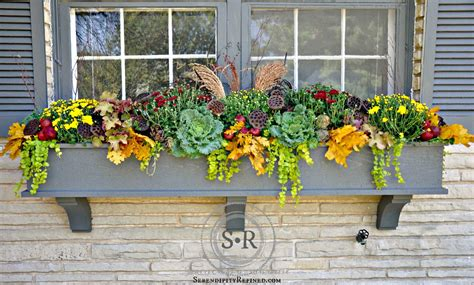 fall flowers for window boxes serendipity refined fall window box planter