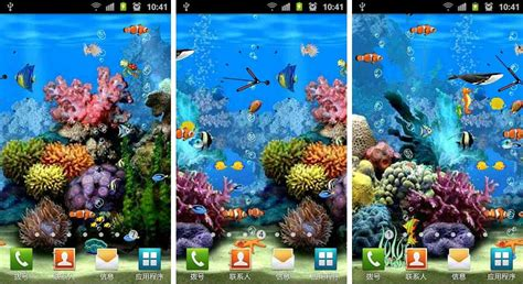 hausen fisch best aquarium and fish live wallpapers for android
