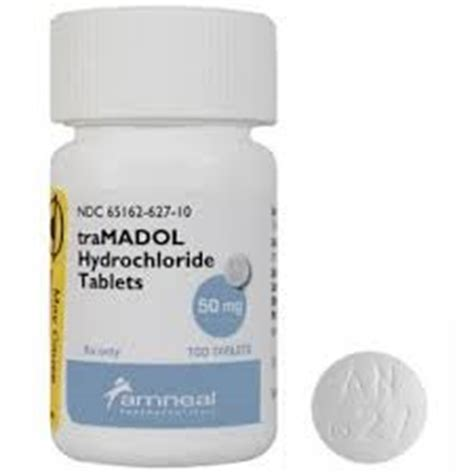 tramadol dosage for dogs tramadol for dogs dosage side effects what you should