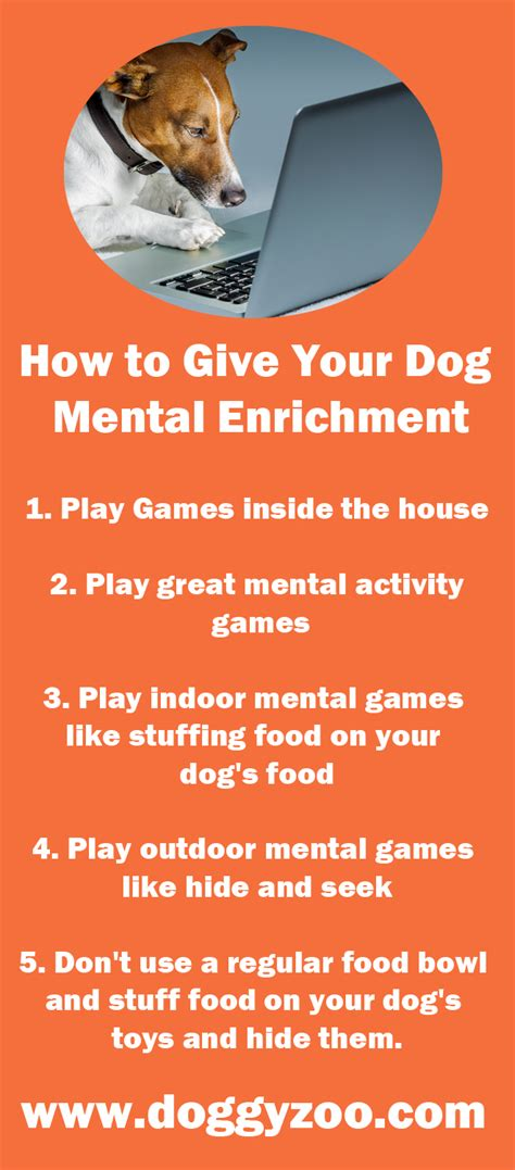how to give puppy how to give your mental enrichment doggyzoo comdoggyzoo