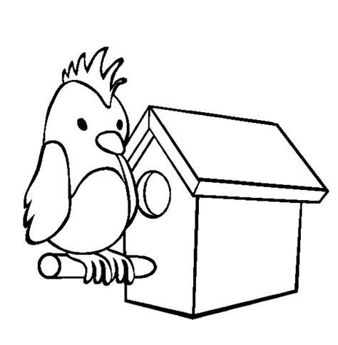 coloring pages bird houses parrot bird house coloring pages parrot bird house