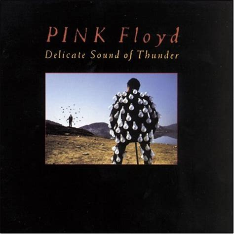 pink floyd comfortably numb delicate sound of thunder delicate sound of thunder 1990 pink floyd albums