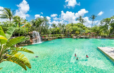 imagenes coral gables miami exploring the beauty of the venetian pool in coral gables