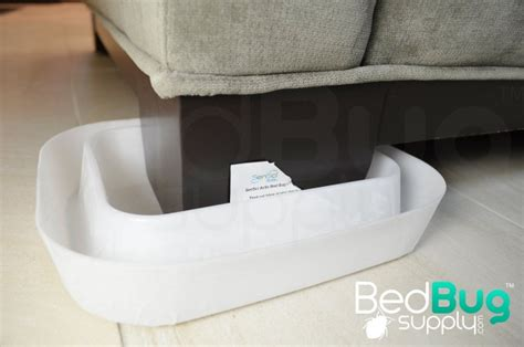 diy bed bug interceptor how to get rid of bed bugs on couches and furniture