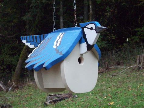 blue jay bird house plans terrific blue jay house plans ideas best inspiration home design