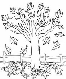 fall tree color page fall tree coloring page free coloring pages on