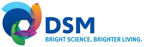 dsm mitsubishi logo high performance plastics dsm engineering plastics