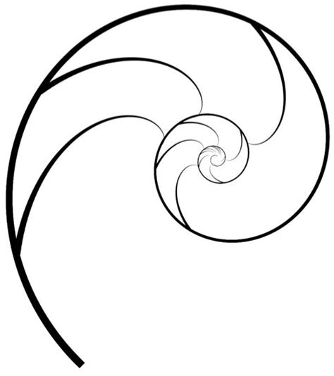 25 best ideas about golden ratio tattoo on pinterest