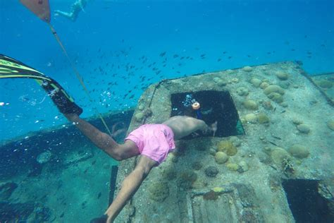 best catamaran trips barbados snorkeling in barbados island routes