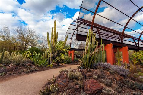 Phx Botanical Garden Visiting The Desert Botanical Garden In