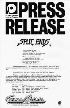 Split Enz Person Audioculture Audio News Release Template