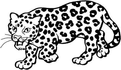imagenes de bebe jaguar para colorear im 225 genes para pintar de leopardos colorear im 225 genes
