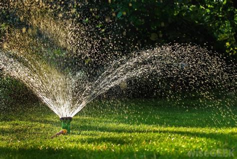 lawn watering tips gb lawncare
