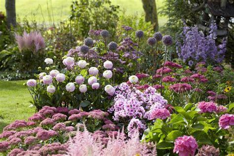 flower bed dahlia astilbe hydrangea phlox sedum my enchanted garden pinterest seasons