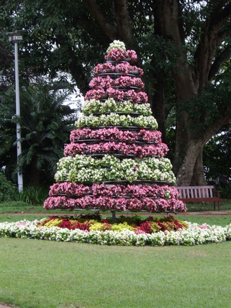 krismas tree to botni name irony a kwazulu natal botanical gardens sculptures and tropical trannies