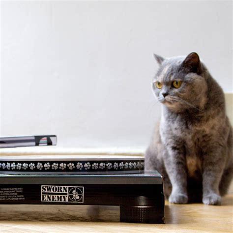 cat scratch dj deck cat scratch dj deck by all things brighton beautiful