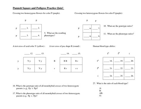 Punnett Square Problems Worksheet by 9 Best Images Of Dihybrid Cross Punnett Square Worksheet