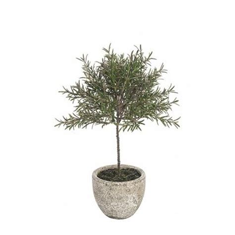 potted topiary plants artificial rosemary topiary tree potted just artificial