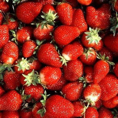 carbohydrates in 5 strawberries fruit facts strawberry nutrition facts fruit facts