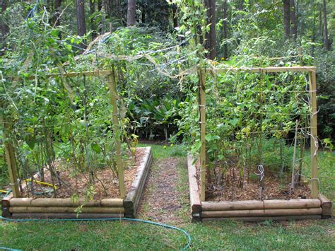 veggie garden layout ideas raised bed garden layout fashionable ideas raised garden
