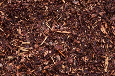 best mulch for your garden jimsmowing com au