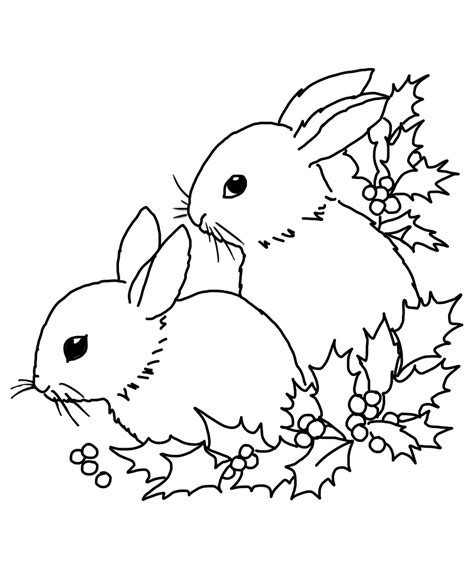 christmas bunny coloring pages christmas coloring pages