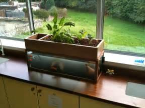 home aquaponics build your own aquaponic system the aquaponic