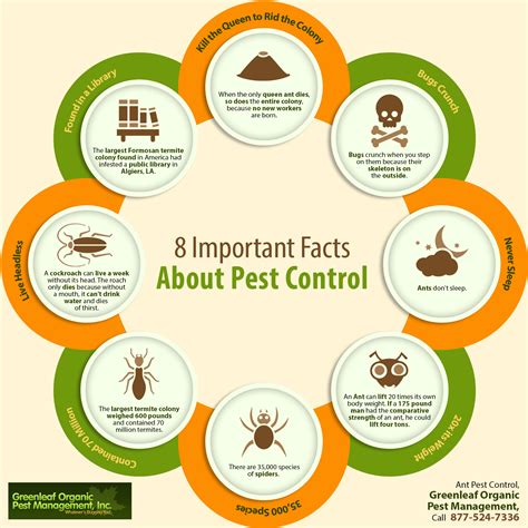 8 Facts On by 8 Important Facts About Pest Shared Info Graphics