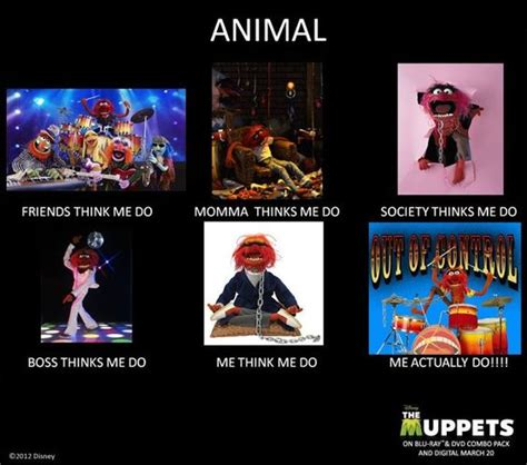 Muppet Memes - animal the muppets out of control quotes pinterest