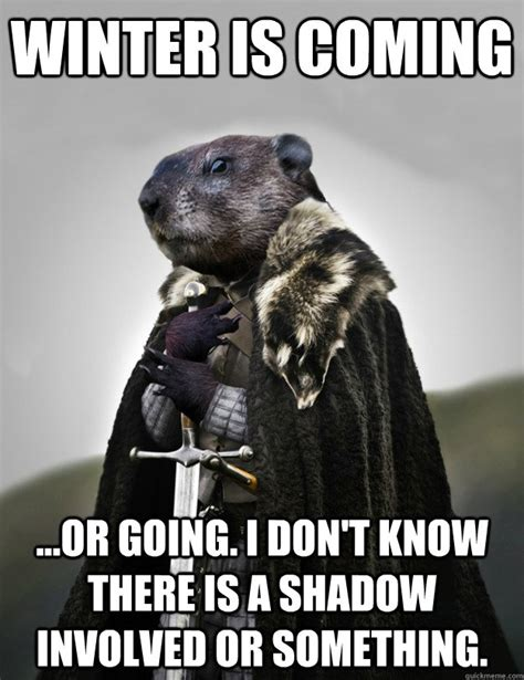 groundhog day jokes of groundhog memes quickmeme