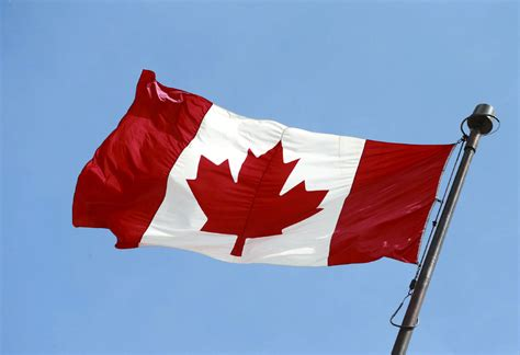 maple leaf flag presents  typically canadian story editorial toronto star