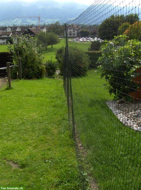 vorhã nge nach mass schweiz 2m hohes katzennetz schutznetz schwarz l 228 nge nach mass