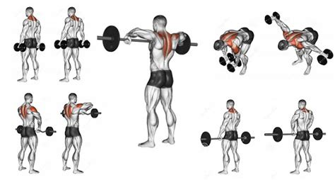 trapezius exercises to help you build stunning back