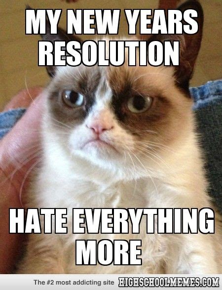 New Cat Meme - 63 best images about grumpy cat on pinterest