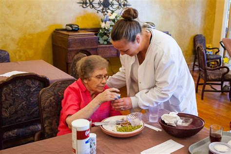 services lakeview manor nursing home