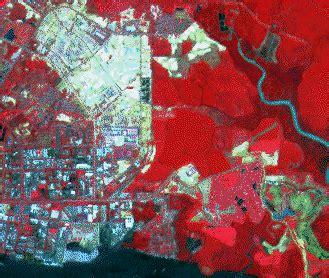 false color image principles of remote sensing centre for remote imaging