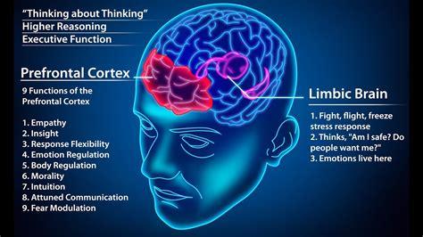 hookup brain stress reduction exercise explained - Brain Stress