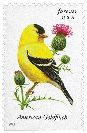 2014 49c songbirds american goldfinch for sale at mystic
