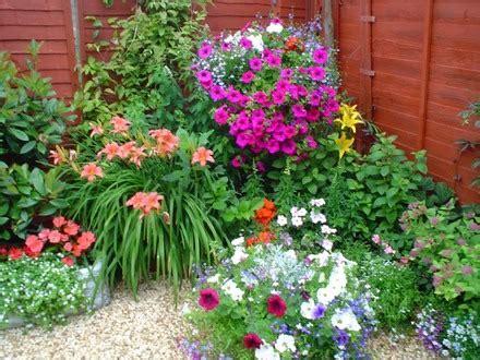 imagenes de jardines llenos de rosas detalles encantadores para decorar el jard 237 n