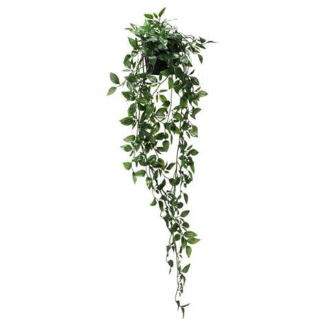 fejka artificial plant hanging  cm ikea home decoration