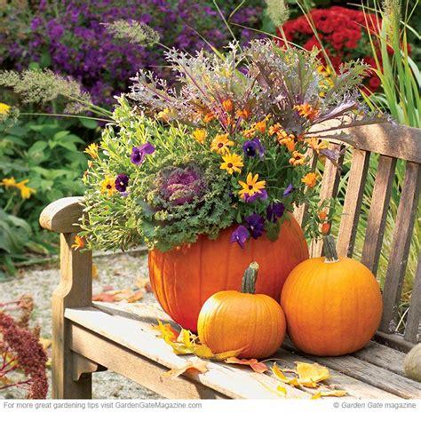 Pumpkin Planter by Pumpkin Planter