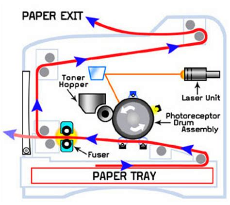 diagram of laser printer limewit tech top 8 laser printer care and