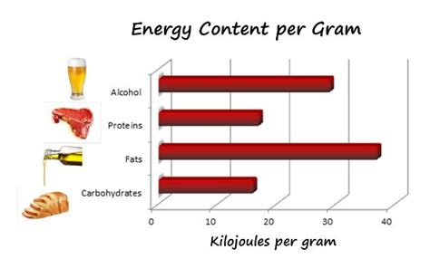 carbohydrates energy per gram energy density weight loss