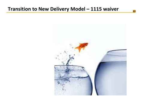 section 1115 waiver ppt an operational vision for care delivery reform in