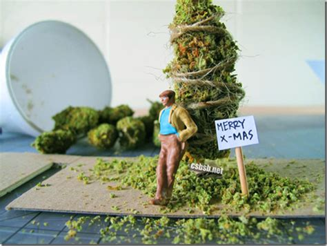 Merry Go Mmj harvest time cannabis digest
