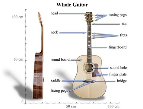 schematics for and guitars 28 images guitar diagram