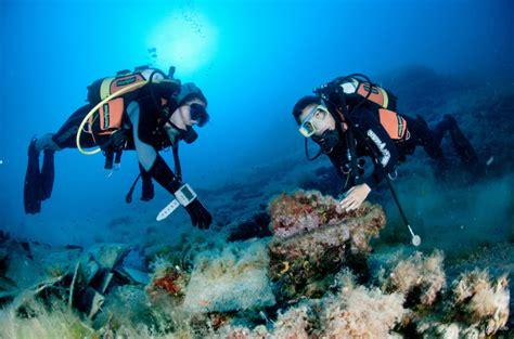 soggiorno isole tremiti soggiorno alle isole tremiti zangardi tours agenzia di