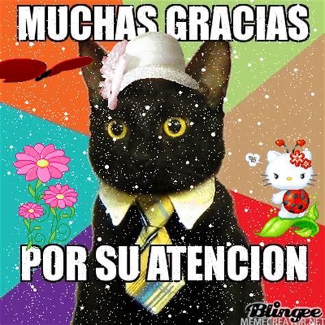 imagenes que digan gracias gatito picture 128848714 blingee com