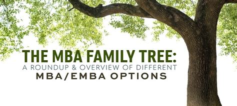 Mba Options by Comparing Your Mba Options