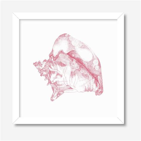 Psjel Pink Original pink sea shell print by rooftop illustrations notonthehighstreet